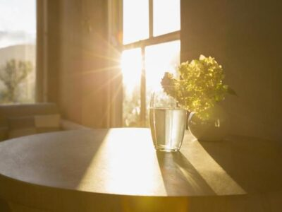 benefits_of_sunlight_property_home_propsocial1_large